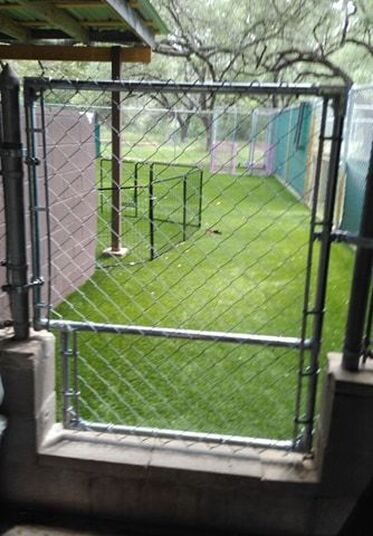 small chain link fence